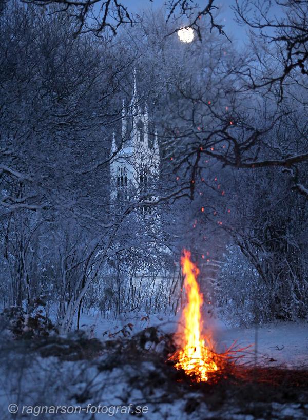 skarva-vinter-18
